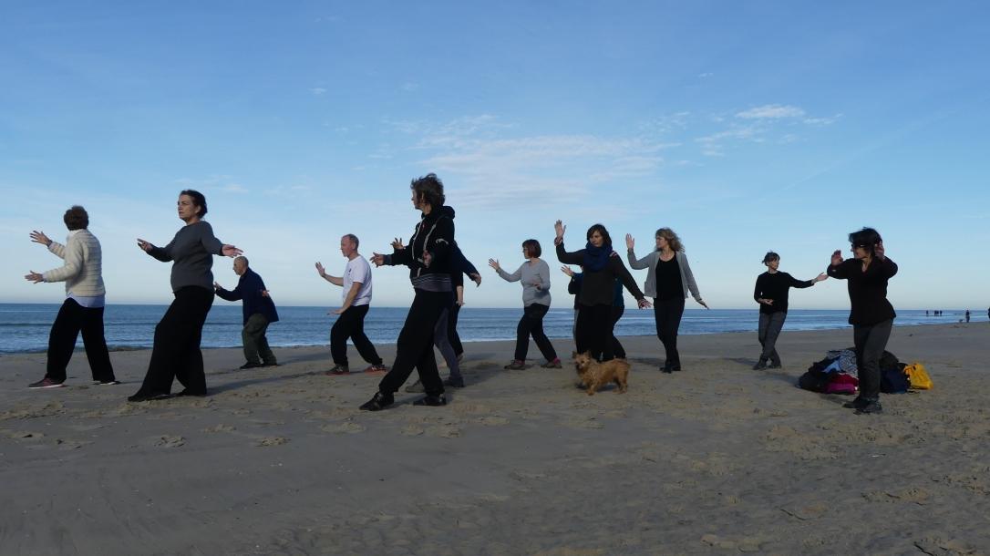 Un groupe de personnes pratique le Taichi-Chuan en bord de mer