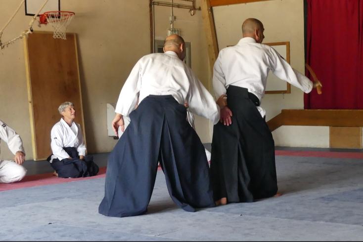 Aikido au cours d'un stage Taichi Qigong Meditation Aikido dans la Drôme en juillet